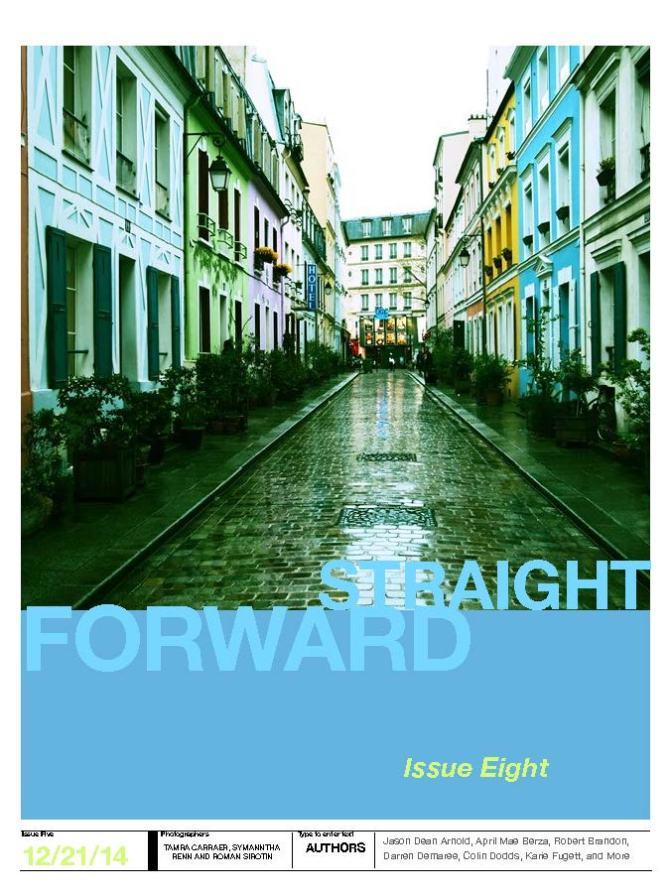 SFP 8 Cover
